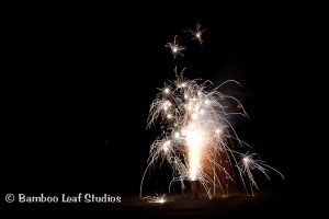 Tips to Photograph Fireworks