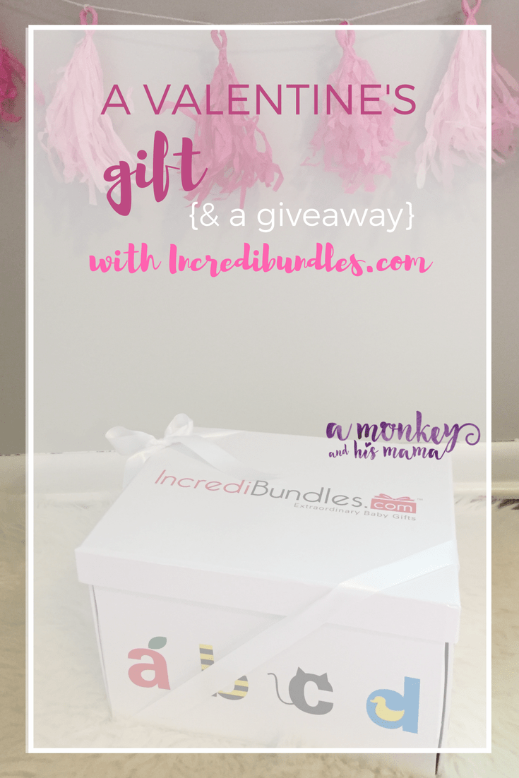 a valentine's gift and a giveaway with incredibundles.com a monkey and his mama