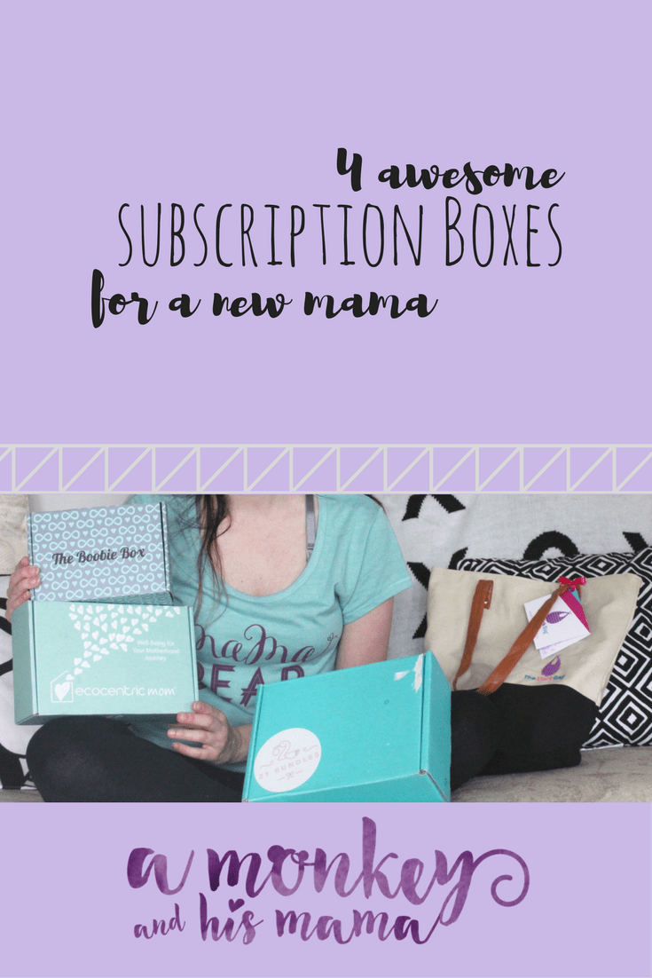 subscription boxes for a new mama