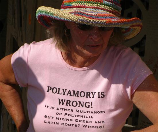 Same Sex Marriage Polygamy 29