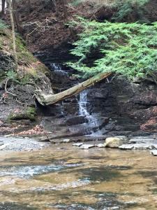Waterfall at Hunter's Creek.