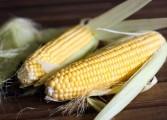 Cómo preparar arepas con maíz pilado, por Sumito Estévez
