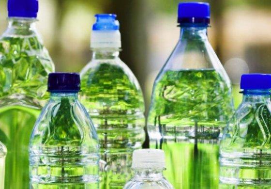 Pet Caribe C.A., plástico reciclado