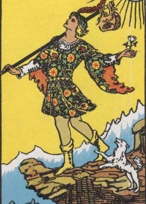 The Fool - Always In Search of Experience
