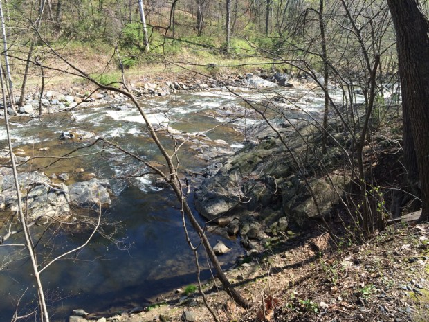 Rocks and rapids on the Patuxent River