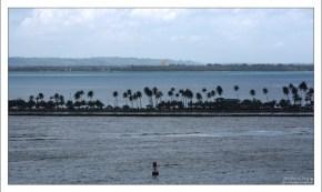 Пальмовая коса перед Сан-Хуаном.
