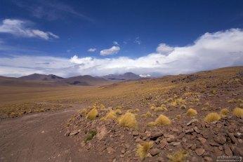 Дорога в Боливию.