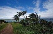 Объездная дорога вокруг озера Аренал. Сильный ветер.