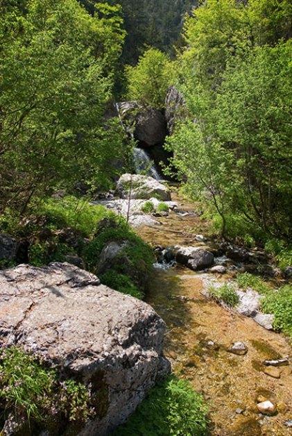 Весенний ручеек в национальном парке Олимп.