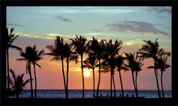 Пальмовый закат. Пляж 'Anaeho'omalu.
