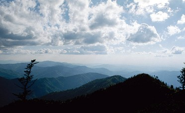 Вечер. Вершина горы Mount LeConte. Great Smoky Mountains. Май, 2001 год.