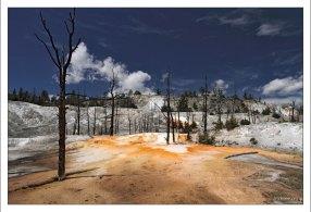 Angel Terrace (Ангельская терраса), где деревья еще не полностью высохли.