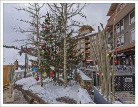 Новогодние ёлки на курорте Copper Mountain.