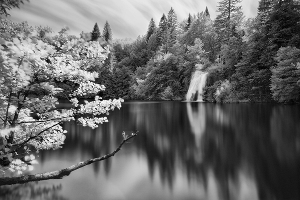 Infrared photography by Luca Cesari