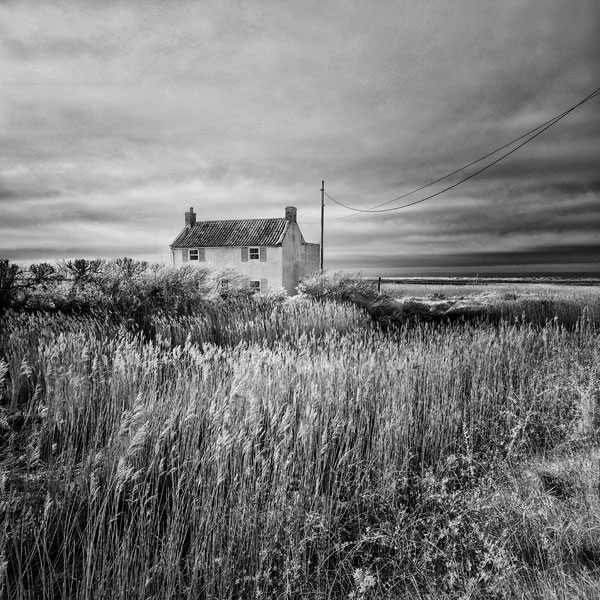 Black and white infrared landscape photo