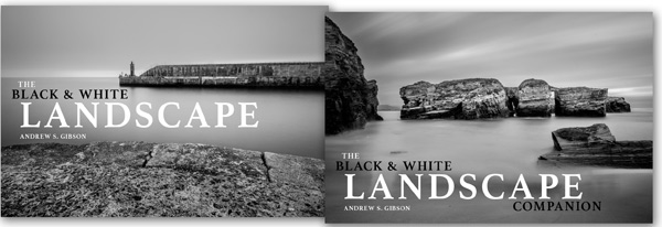 Black & white landscape ebook covers