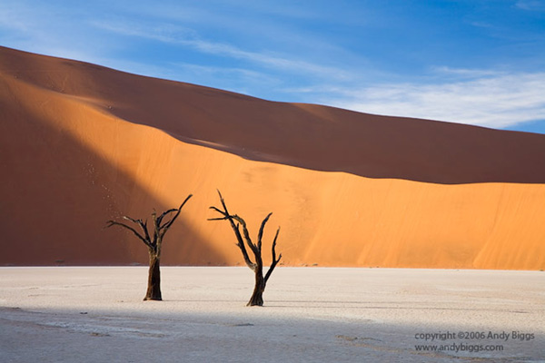 Colour landscape fine art photo of sand dunes in Namibia by Andy Biggs
