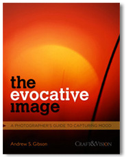 The Evocative Image ebook cover