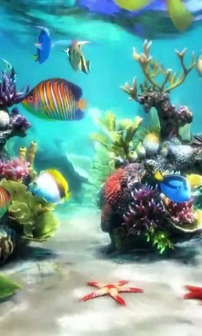 Aquarium Wallpaper For Android | MEJOR CONJUNTO DE FRASES
