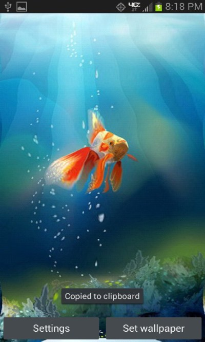 Goldfish in yuor Phone Live Wallpaper free Android App ...
