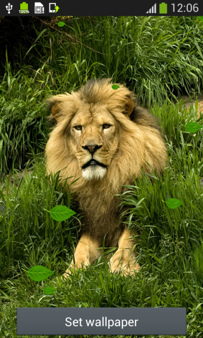 Lion Live Wallpapers Android App - Free APK by Popular Melodies