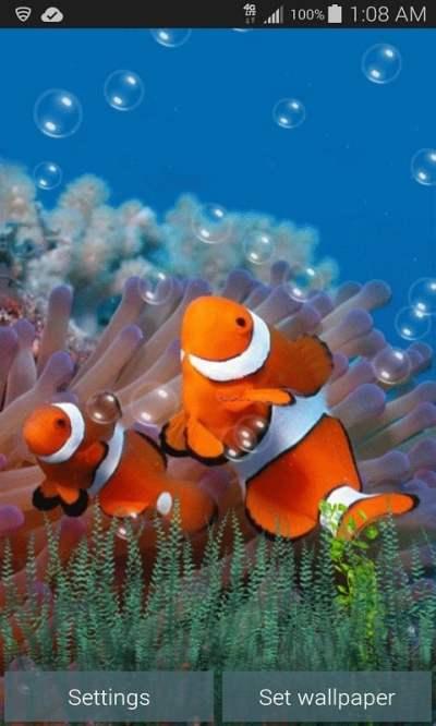 Underwater Fish Live Wallpaper