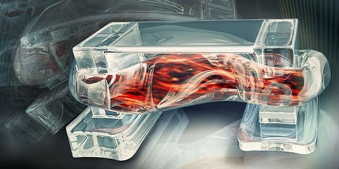 Eine künstlerische Darstellung des Biobot. (Bild: Janet Sinn-Hanlon, Design Group@VetMed)