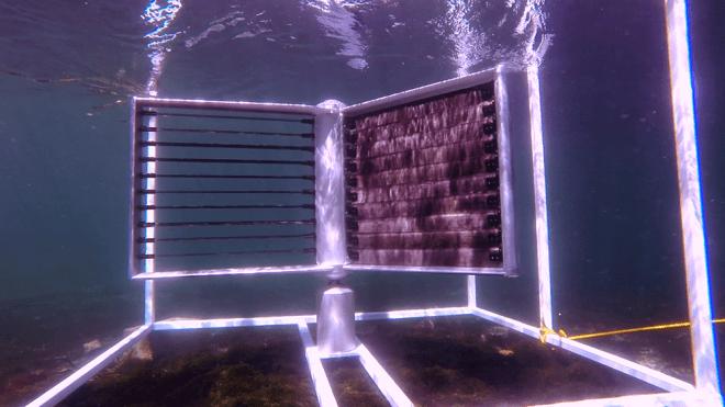 marine-energy-turbine
