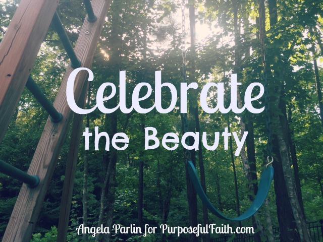 Celebrate the Beauty