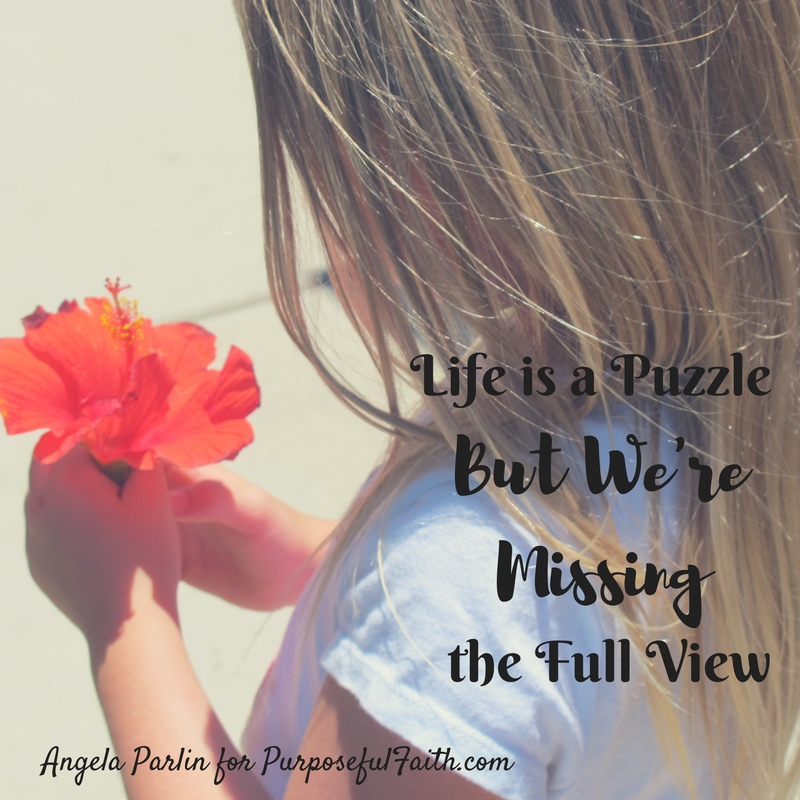 Life is a Puzzle, But We're Missing the Full View