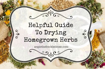 Helpful Guide To Drying Homegrown Herbs