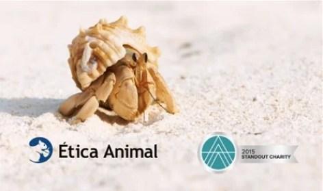 Ética Animal reconhecida como organização em destaque por sua efetividade