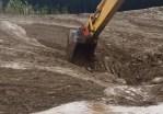 泥流に飲み込まれた鹿をパワーショベルで救出