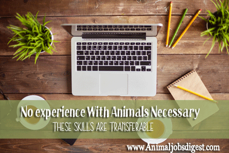 No experience with animals necessary - these skills are transferable