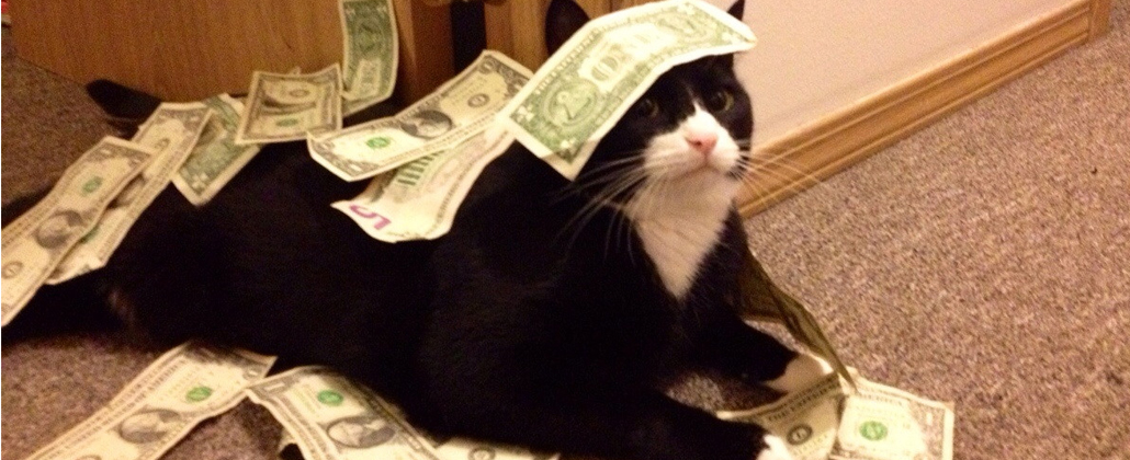 cash for cats (and dogs)