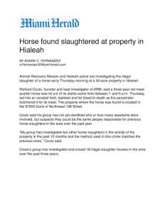 miami herald horse slaughter 7-23-15 pdf