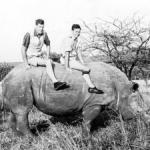 Ian Player,  87,  saved South African rhinos from extinction,  only to see them at risk again