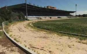 The former Mile High greyhound track near Denver closed on September 1, 2008.