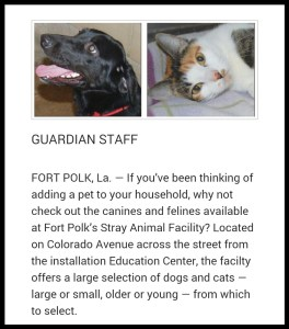 Fort Polk is considered a dog-friendly base––except by owners of banned breeds.