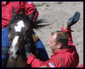 Cowboy slaps horse at the 2011 Cheyenne Frontier Days Rodeo.  (SHARK photo)