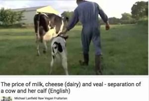 Calf Removed