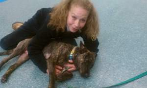Fitchburg animal control officer Susan Kowaleski poses with another pit bull in Facebook photo.