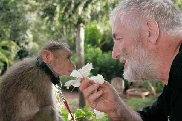 Hicks & monkey