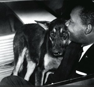 Martin Luther King Jr. was placed in a police car in St. Augustine, Florida, on June 18, 1964. A German shepherd police dog was then put into the car with King as an apparent attempt at intimidation, but instead King and the dog promptly made friends.