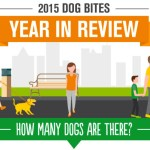 2015 dog bite-related stats in info-graphic