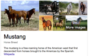 Mustang definition from Wikipedia.
