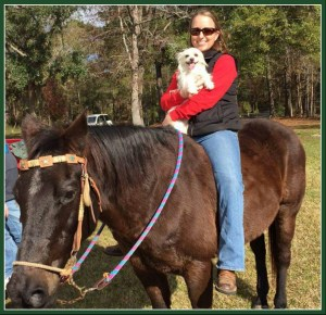 Michelle Wilcox and one of her favorite small dogs, on horseback. (Facebook photo)