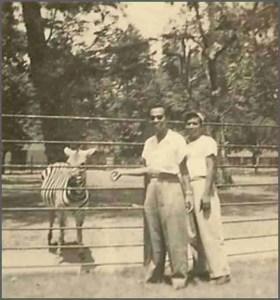 The Surabaya Zoo in 1953.