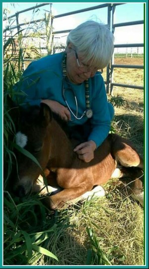 Karen Sussman with foal. (ISPMB photo)
