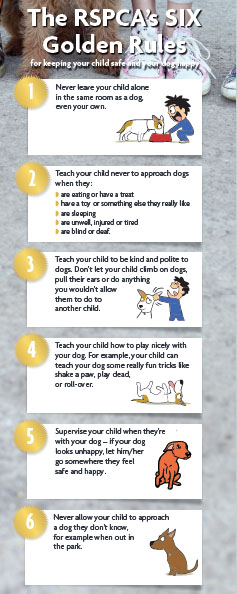 """The RSPCA's six """"golden rules"""" for preventing dog attacks."""